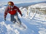Snowboard on Hoodoo mountain
