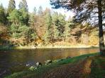 The beautiful River Dee is only a 5 minute walk from the Stables.