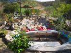 Chill area in our mature gardens.