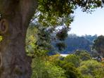 Serendip - View to Lake Daylesford