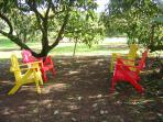 sit and relax,have a quite drink under the avocado trees which are now ripe for eating