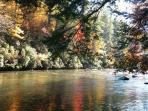 Beautiful Fall River View