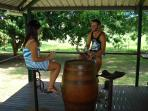Wine barrel & tractor seat furniture on veranda