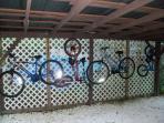 5 bikes...2 adult and 2 children