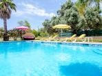 Huge 14 x 6 meter pool