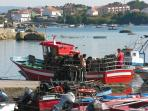 Nice fishermen port  9 minutes away from your  apartment with fresh catch every day after 06.00 a.m