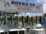 Recommended Fishing Charter, caught fathers day 2014