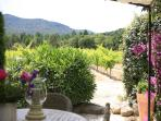 View of vineyards from Bastide 2 outdoor dining area