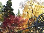 Autumn at Drake Park, Bend