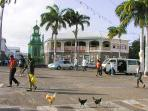 Beautiful Basseterre. Spend time shopping at Port Zante duty free shops & sight seeing the town.