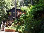 Big Bertha's, Redwood Treehouse, Private, Guerneville, CA