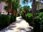 Beautiful walkway to the beach