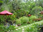 A view to one of our lotus koi ponds from the porch from Bungalow Bunga Kecil