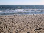 walk to Belmont beach! - West Harwich Cape Cod New England Vacation Rentals