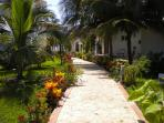 The first view as you step onto the properties, beautiful gardens, stunning colors!