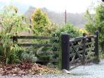 Autumn at Llys Hendy