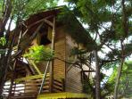le bungalow atypique Talipo avec ses 3 niveaux nichés dans les branches