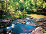 Take a swim in the natural fresh water rock pools which are nearby