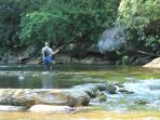 Miles of pristine mountain streams for world class trout fishing
