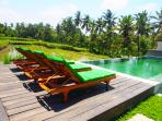Infinity Edge Pool Overlooking Rice fields