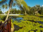 Bonita Village garden water lake view