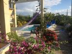 Hamac and pool