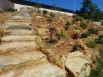 Steps to rockery