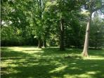 Private back yard on 1 acre