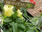 fiori sul balconcino