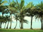 Fiji Beach House