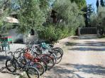 Biciclette Villetta 2 persone Vieste del Gargano, Puglia