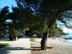 Walking promenade- beach Crikvenica, 30 m  front of house