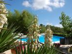 Summer holiday in house for rent in Italy