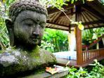 Buddha & Bale