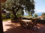 under the olive tree on terrace