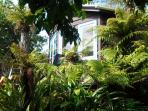 The cottage is set in a gorgeous garden full of ferns,fruit trees and flowers