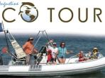 St Augustine EcoTours has both boat and kayak tours.