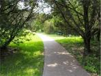 Walnut Creek Hike and Bike Greenbelt Trails just a few steps away