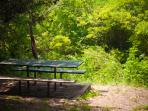 Picnic/BBQ right on one of Austin's great greenbelts...