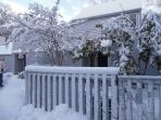 Love, love, love winters on the Cape!