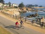 Walk or Bike for miles along the Recreation Trail from Pacific Grove to Monterey.  Look for Sea Otters and Harbor Seals...