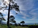 Panoramic Ocean and Point Lobos views.