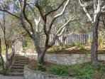 Beautiful private yard with trees and landscaping in very quiet neighborhood.