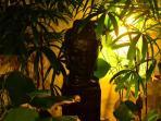 Budha tranquility