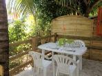 la terrasse et son cocotier