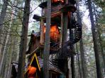 Visit The Enchanted Forest an old growth forest in the Mountains (you'll see 800 year old cedar trees