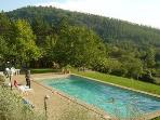 Fantastic pool with amazing views