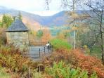 Beautiful Benmore Gardens in Autumn