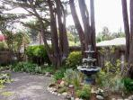 Beautiful Garden with Many Large Trees.