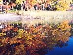 Seven Tree Pond